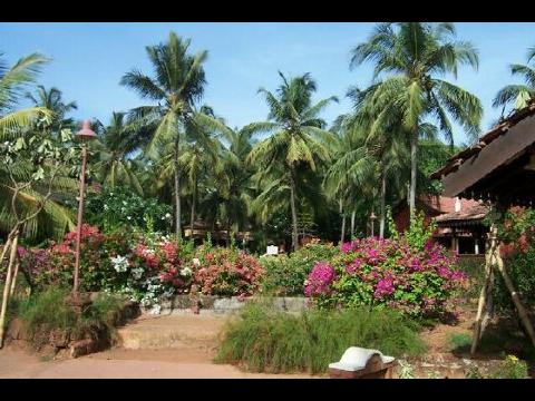 Goa HotelGoa Resort Holiday Packages 3 Nights 4 Days Cottage